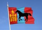 Картинка: Монгольский сферический скакун