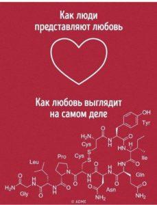 Картинка: Любовь