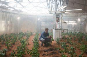 Картинка: Картошка на Марсе