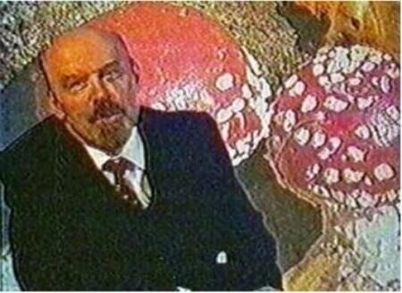 Картинка: Ленин - гриб