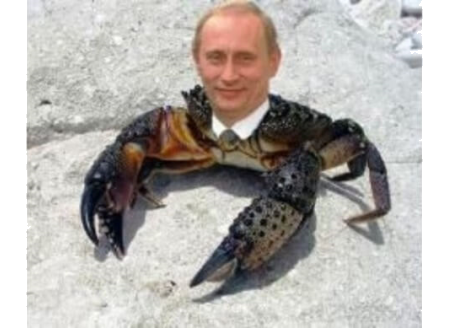 Картинка: Путин - краб