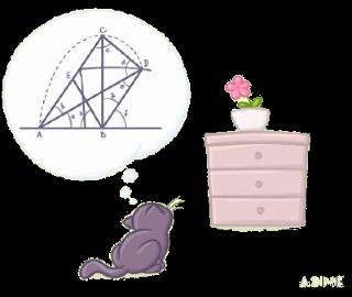 Pic.: Cat Math © IrK