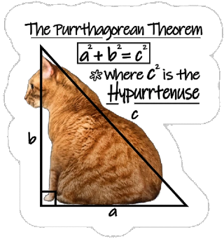 Pic.: Advertising. The Purrthogorean Theorem where c is the hypurrtrnuse